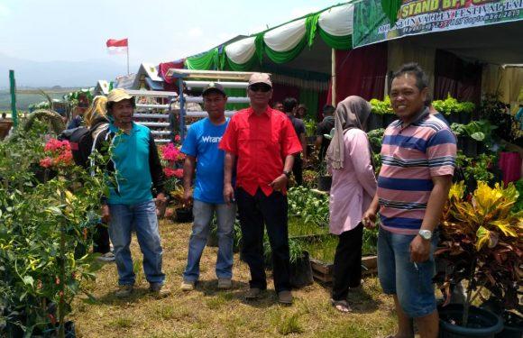 12 Stand Sayur dan Buah Dinas Pertanian Menarik Dikunjungi